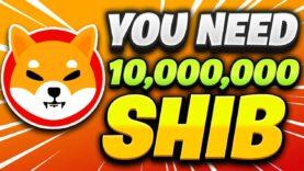 Why You Need 10,000,000 SHIBA INU (SHIB) Tokens!